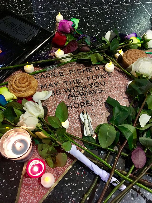 De officieuze Carrie Fisher ster in 2016   Foto: Justin Sewell